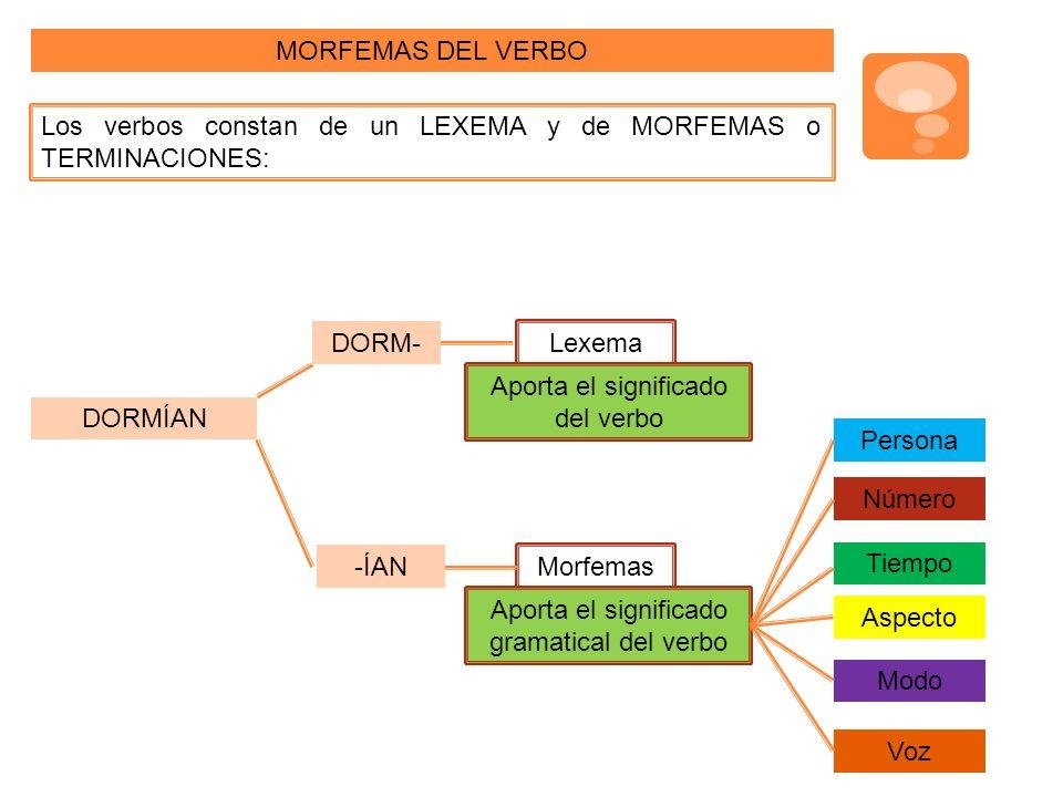 MORFEMAS DEL VERBO Los verbos constan de un LEXEMA y de MORFEMAS o TERMINACIONES: DORMÍAN DORM- -ÍAN Lexema Morfemas Aporta el significado del verbo Aporta el significado gramatical del verbo Persona Número Tiempo Aspecto Modo Voz