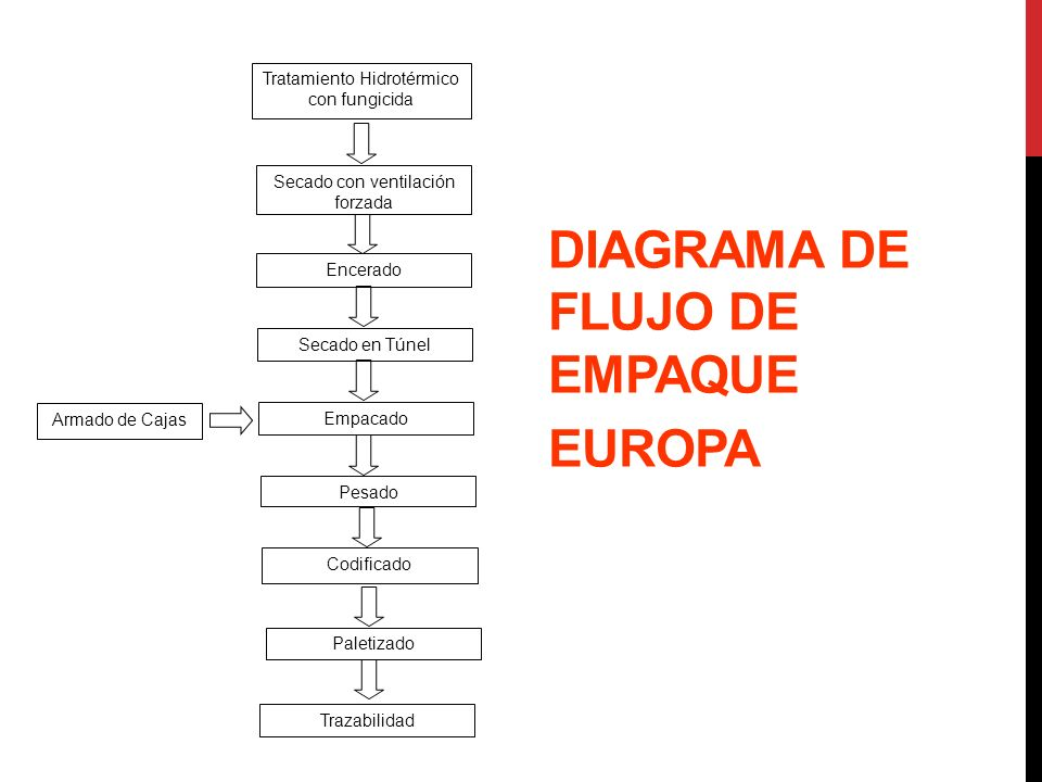 DIAGRAMA DE FLUJO DE EMPAQUE EUROPA Tratamiento Hidrotérmico con fungicida Encerado Secado en Túnel Armado de Cajas Empacado Pesado Codificado Paletiz