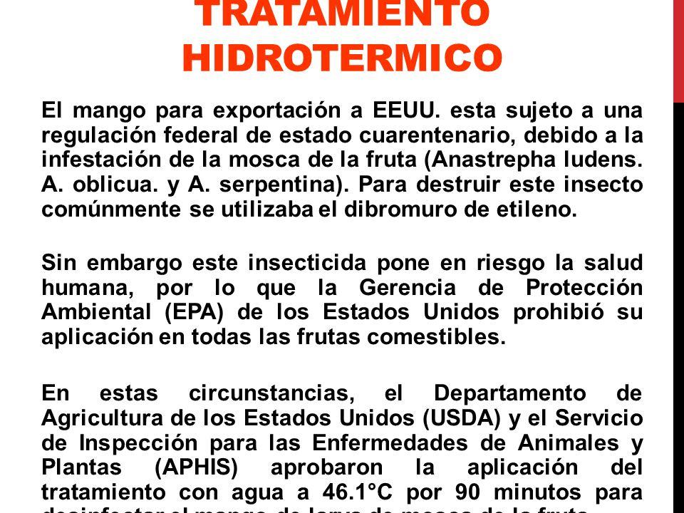 TRATAMIENTO HIDROTERMICO El mango para exportación a EEUU. esta sujeto a una regulación federal de estado cuarentenario, debido a la infestación de la