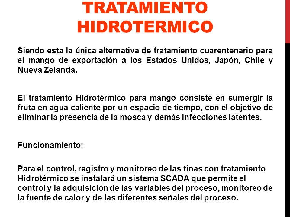 TRATAMIENTO HIDROTERMICO Siendo esta la única alternativa de tratamiento cuarentenario para el mango de exportación a los Estados Unidos, Japón, Chile