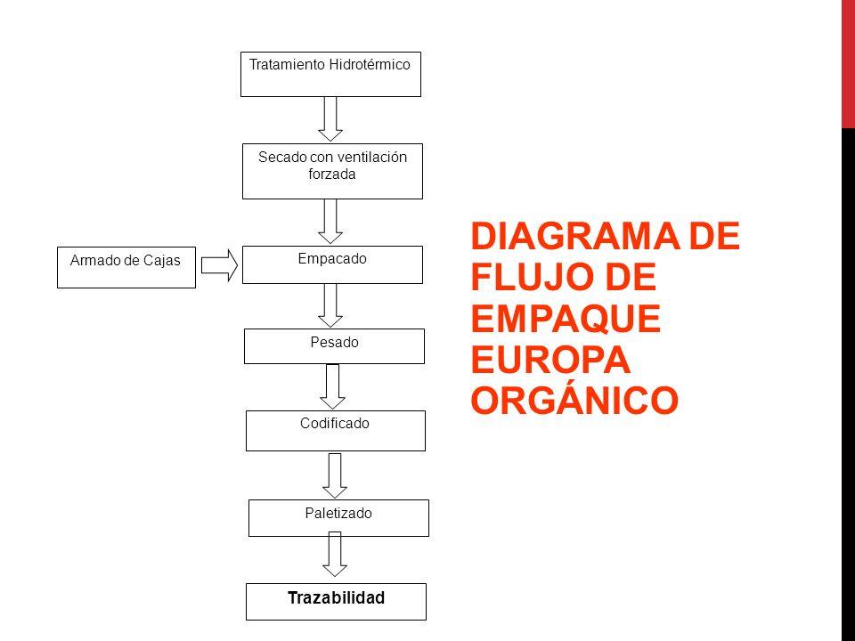 DIAGRAMA DE FLUJO DE EMPAQUE EUROPA ORGÁNICO Tratamiento Hidrotérmico Armado de Cajas Empacado Pesado Codificado Paletizado Secado con ventilación for