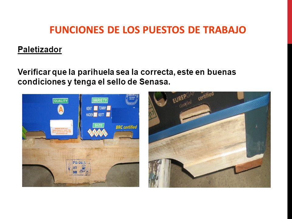Paletizador Verificar que la parihuela sea la correcta, este en buenas condiciones y tenga el sello de Senasa. FUNCIONES DE LOS PUESTOS DE TRABAJO