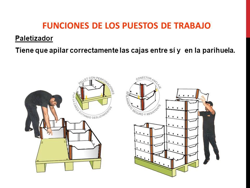 Paletizador Tiene que apilar correctamente las cajas entre sí y en la parihuela. FUNCIONES DE LOS PUESTOS DE TRABAJO
