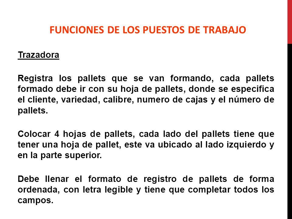 Trazadora Registra los pallets que se van formando, cada pallets formado debe ir con su hoja de pallets, donde se especifica el cliente, variedad, cal