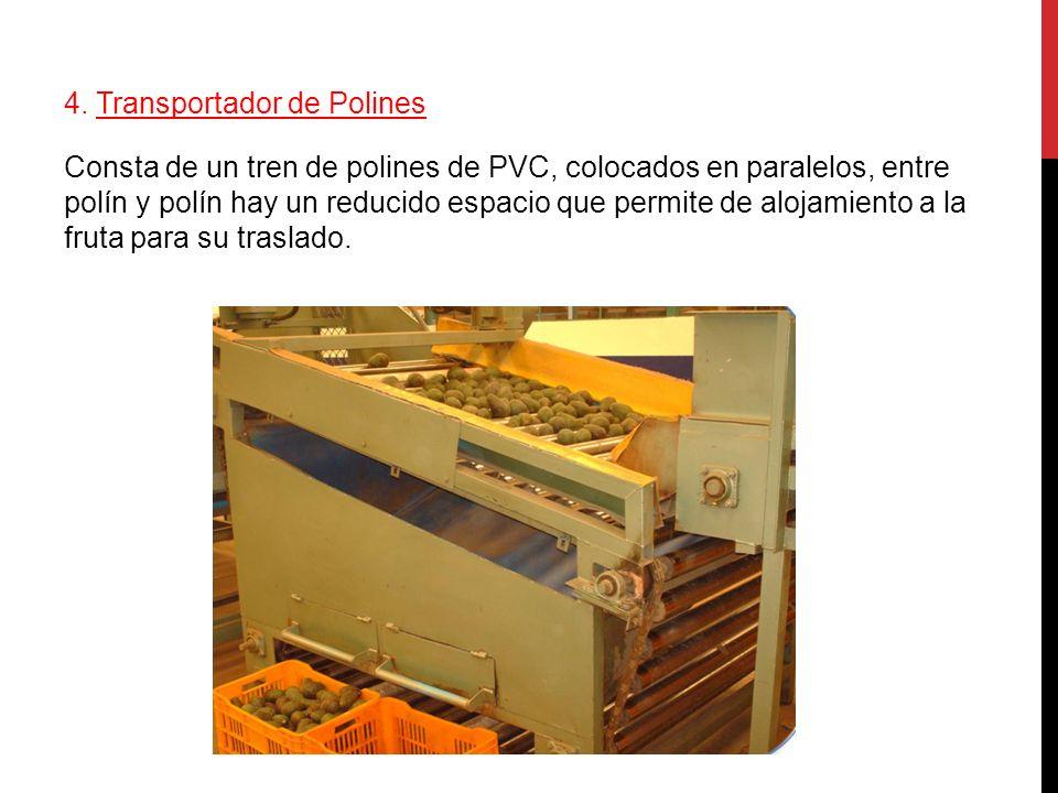 4. Transportador de Polines Consta de un tren de polines de PVC, colocados en paralelos, entre polín y polín hay un reducido espacio que permite de al
