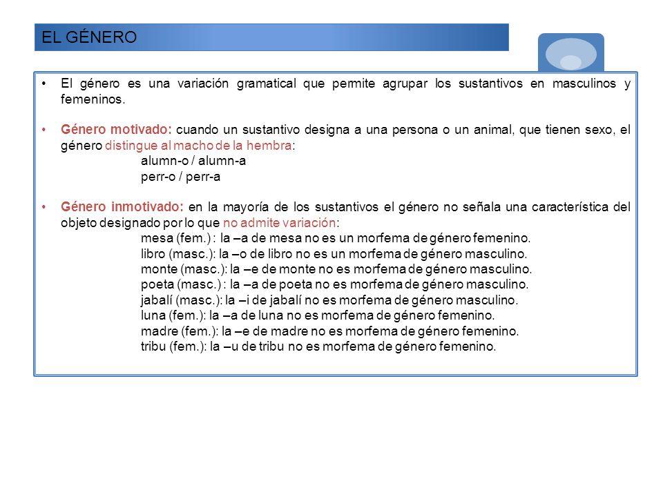 EL GÉNERO El género es una variación gramatical que permite agrupar los sustantivos en masculinos y femeninos. Género motivado: cuando un sustantivo d