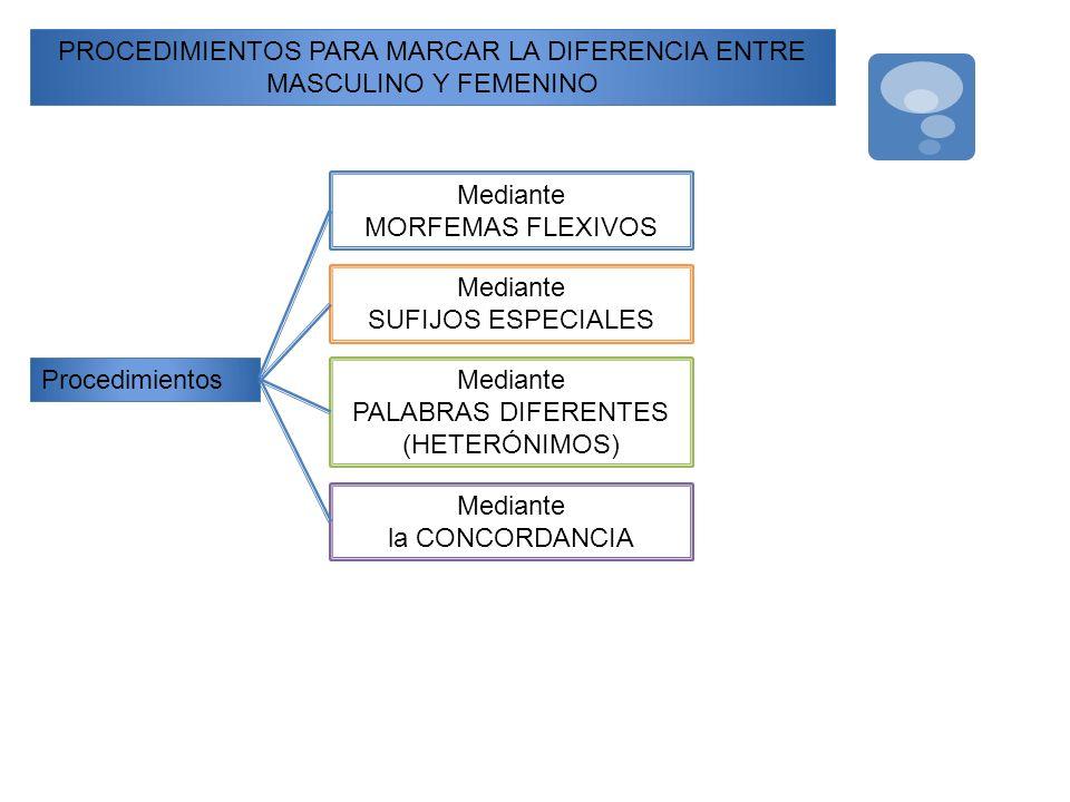 PROCEDIMIENTOS PARA MARCAR LA DIFERENCIA ENTRE MASCULINO Y FEMENINO Procedimientos Mediante MORFEMAS FLEXIVOS Mediante SUFIJOS ESPECIALES Mediante PAL