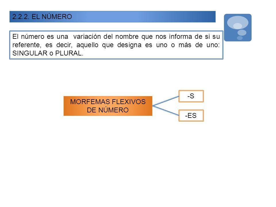 2.2.2. EL NÚMERO El número es una variación del nombre que nos informa de si su referente, es decir, aquello que designa es uno o más de uno: SINGULAR