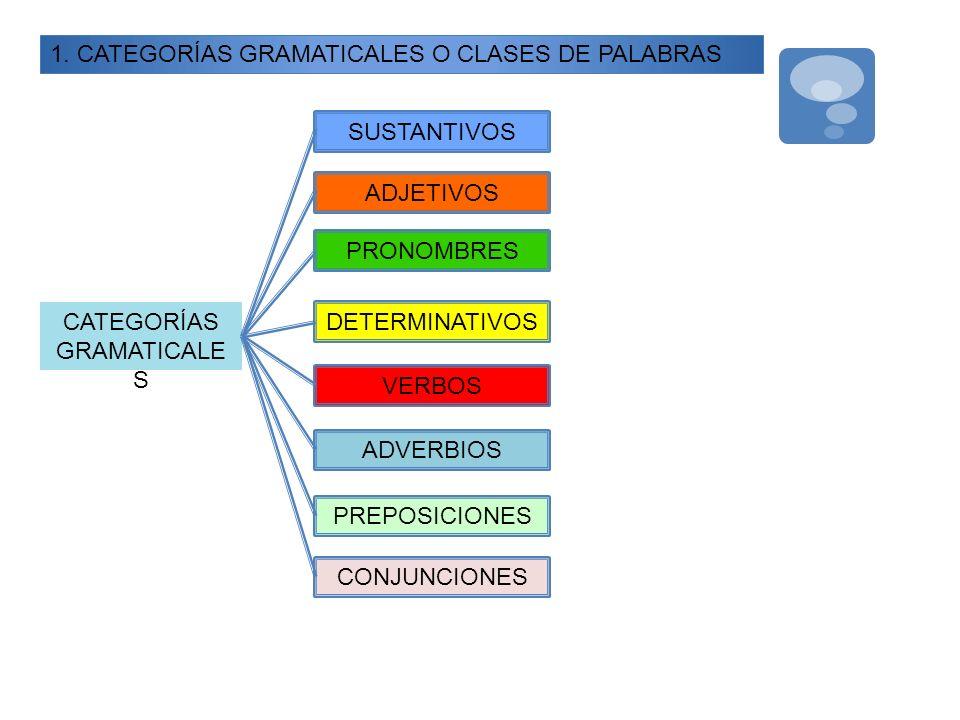 1. CATEGORÍAS GRAMATICALES O CLASES DE PALABRAS CATEGORÍAS GRAMATICALE S SUSTANTIVOS VERBOS ADJETIVOS PRONOMBRES DETERMINATIVOS ADVERBIOS CONJUNCIONES