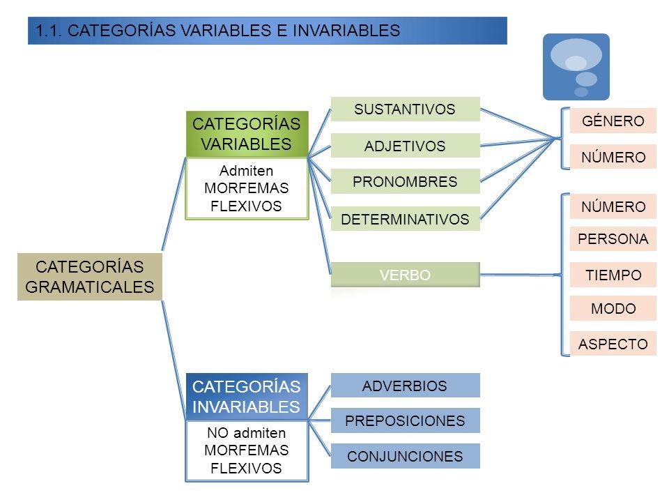 1.1. CATEGORÍAS VARIABLES E INVARIABLES CATEGORÍAS GRAMATICALES CATEGORÍAS VARIABLES Admiten MORFEMAS FLEXIVOS GÉNERO NÚMERO SUSTANTIVOS ADJETIVOS PRO