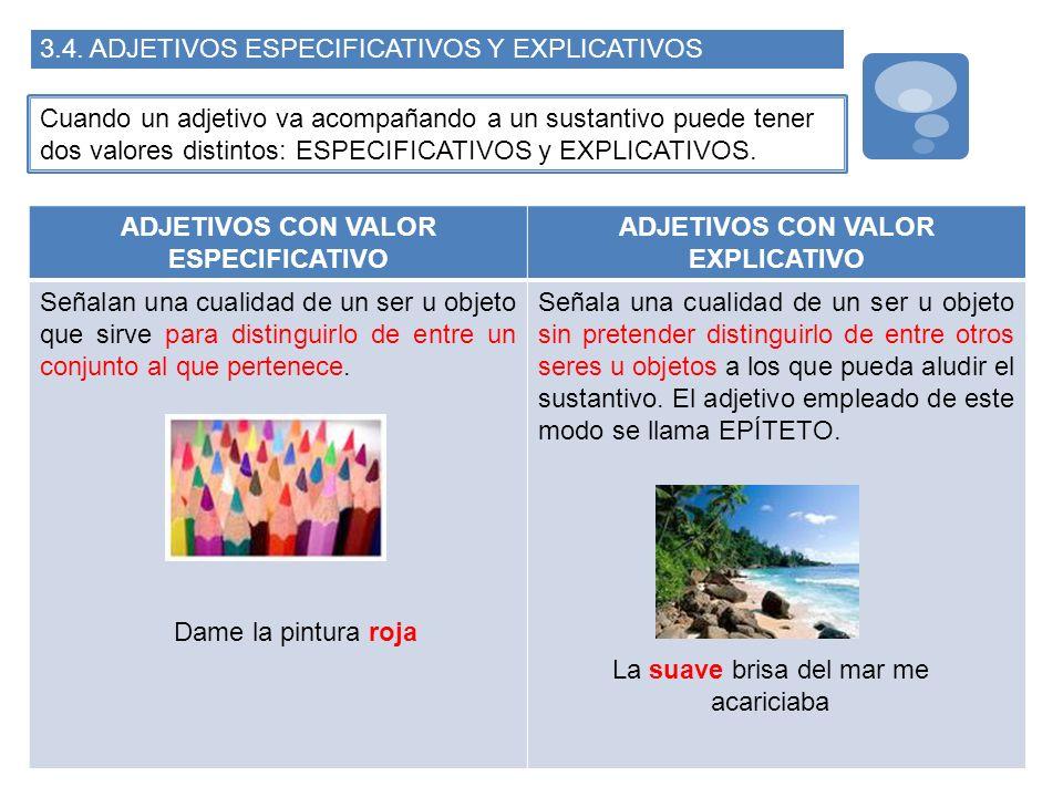 3.4. ADJETIVOS ESPECIFICATIVOS Y EXPLICATIVOS Cuando un adjetivo va acompañando a un sustantivo puede tener dos valores distintos: ESPECIFICATIVOS y E