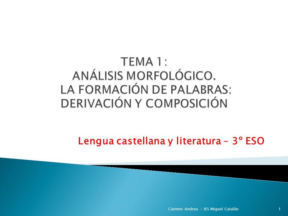 Lengua castellana y literatura – 3º ESO Carmen Andreu - IES Miguel Catalán1