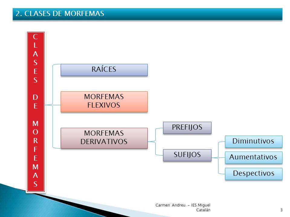 Carmen Andreu - IES Miguel Catalán3 2. CLASES DE MORFEMAS CLASESDEMORFEMASCLASESDEMORFEMAS CLASESDEMORFEMASCLASESDEMORFEMAS RAÍCES MORFEMAS FLEXIVOS M