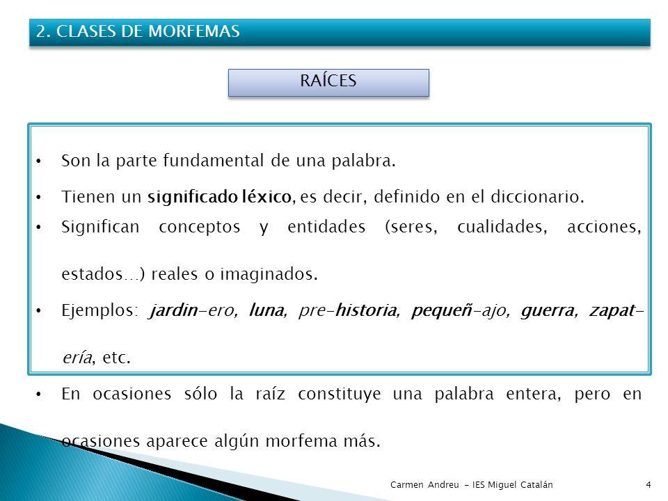 Carmen Andreu - IES Miguel Catalán4 2. CLASES DE MORFEMAS RAÍCES Son la parte fundamental de una palabra. Tienen un significado léxico, es decir, defi