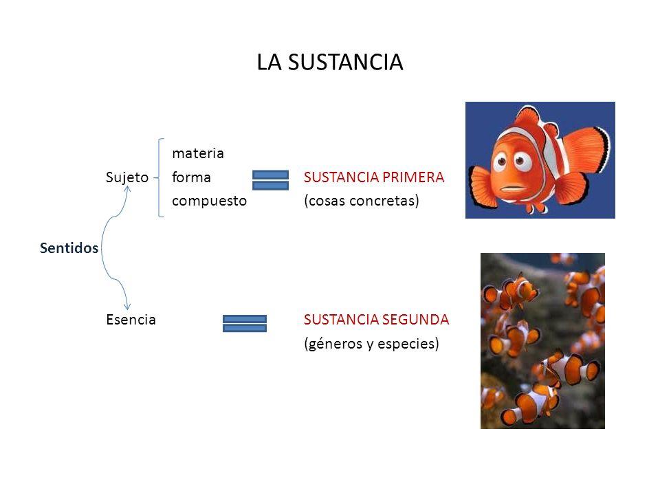 LA SUSTANCIA materia SujetoformaSUSTANCIA PRIMERA compuesto(cosas concretas) Sentidos EsenciaSUSTANCIA SEGUNDA (géneros y especies)