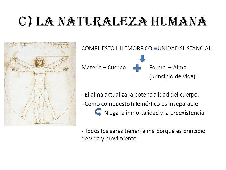 c) La naturaleza humana COMPUESTO HILEMÓRFICO UNIDAD SUSTANCIAL Materia – CuerpoForma – Alma (principio de vida) - El alma actualiza la potencialidad