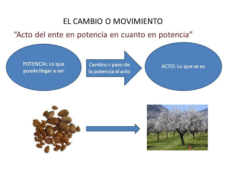 EL CAMBIO O MOVIMIENTO Acto del ente en potencia en cuanto en potencia POTENCIA: Lo que puede llegar a ser ACTO: Lo que se es Cambio = paso de la pote