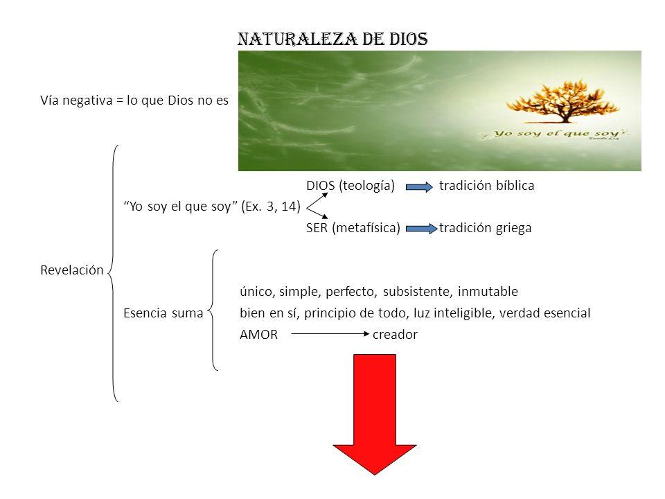 Naturaleza de dios Vía negativa = lo que Dios no es DIOS (teología)tradición bíblica Yo soy el que soy (Ex. 3, 14) SER (metafísica)tradición griega Re