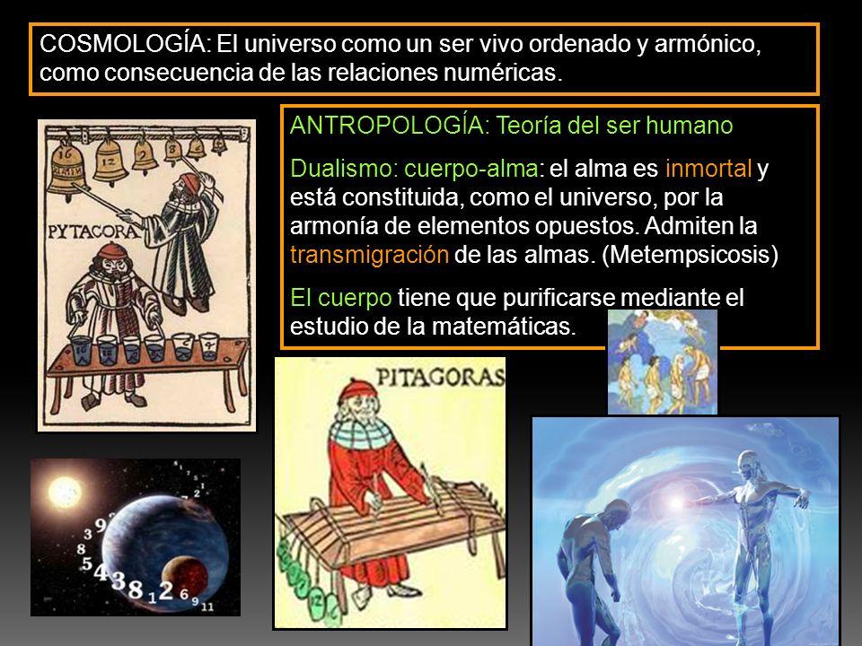 COSMOLOGÍA: El universo como un ser vivo ordenado y armónico, como consecuencia de las relaciones numéricas. ANTROPOLOGÍA: Teoría del ser humano Duali