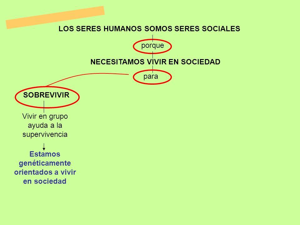 LOS SERES HUMANOS SOMOS SERES SOCIALES NECESITAMOS VIVIR EN SOCIEDAD para porque SOBREVIVIR Vivir en grupo ayuda a la supervivencia Estamos genéticame