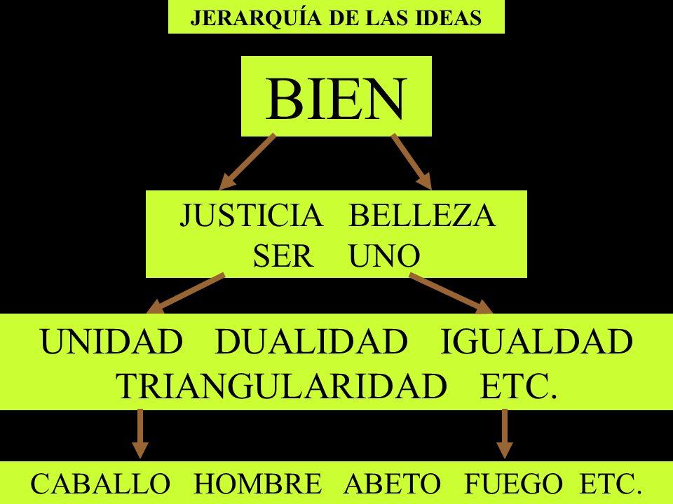 JERARQUÍA DE LAS IDEAS BIEN JUSTICIA BELLEZA SER UNO UNIDAD DUALIDAD IGUALDAD TRIANGULARIDAD ETC. CABALLO HOMBRE ABETO FUEGO ETC.