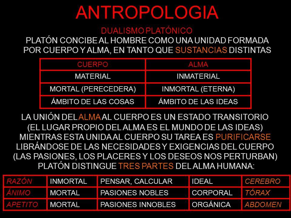 ANTROPOLOGIA RAZÓNINMORTALPENSAR, CALCULARIDEALCEREBRO ÁNIMOMORTALPASIONES NOBLESCORPORALTÓRAX APETITOMORTALPASIONES INNOBLESORGÁNICAABDOMEN PLATÓN EXPLICA LA ESTRUCTURA TRIPARTITA DEL ALMA A TRAVÉS DEL MITO DEL CARRO ALADO COMPUESTO POR EL AURIGA (RAZÓN) Y DOS CABALLOS: UNO BLANCO Y DÓCIL (ÁNIMO), EL OTRO NEGRO, REBELDE E INDÓMITO (APETITO)