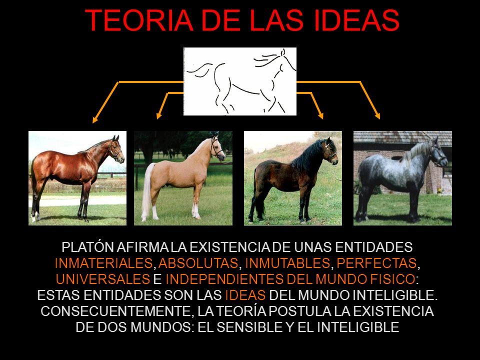 TEORIA DE LAS IDEAS CARACTERÍSTICAS DE LAS IDEAS NO SE VEN A SIMPLE VISTA, SÓLO CON LA INTELIGENCIA NO EXISTEN EN LAS COSAS SINO SEPARADAS (TRASCENDENTES) LAS COSAS SE RELACIONAN CON LAS IDEAS POR IMITACIÓN O PARTICIPACIÓN (LAS IDEAS SON PARADIGMAS O MODELOS) TIENEN CARÁCTER NORMATIVO: NO DESCRIBEN COMO SON SINO COMO DEBEN SER LAS COSAS: SON OBJETO DE DEFINICIÓN ESTAN JERARQUIZADAS Y ORDENADAS A PARTIR DE LA IDEA SUPREMA DE BIEN: LAS IDEAS MORALES, ESTETICAS… MUNDO SENSIBLEMUNDO INTELIGIBLE COSAS FINITASIDEAS ETERNAS GENERACIÓN Y CORRUPCIÓNINGENITAS E IMPERECEDERAS MUTABLES (TRANSFORMACIÓN)INMUTABLES (INALTERABLES) PARTICULARES (CONCRETAS)UNIVERSALES (ABSTRACTAS) ININTELIGIBLES (MATERIALES)INTELIGIBLES (PENSABLES)