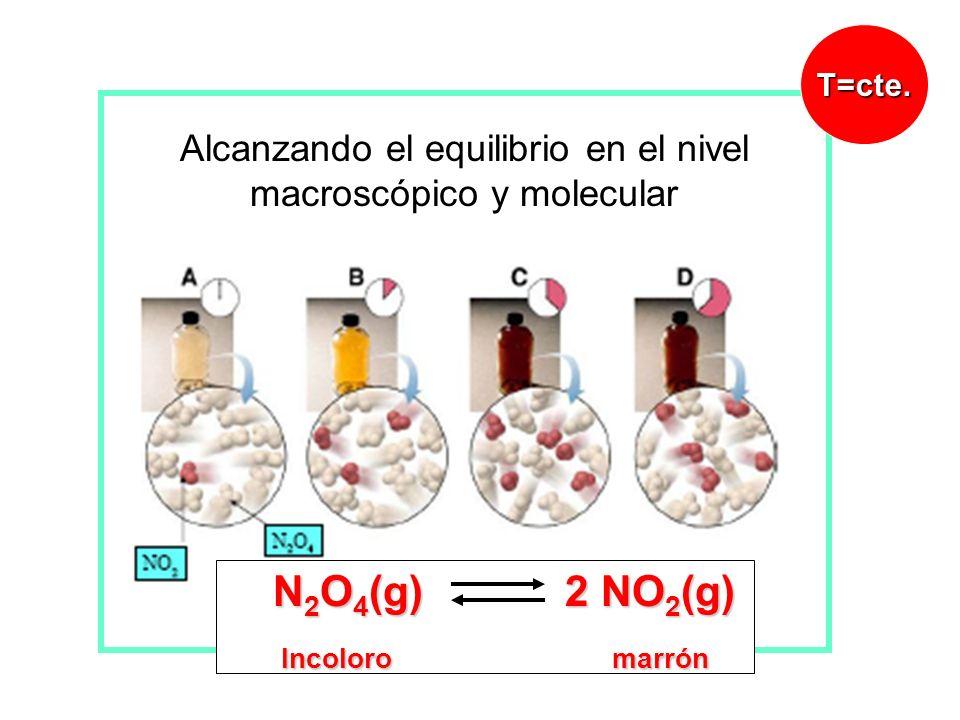 N 2 O 4 (g) 2 NO 2 (g) N 2 O 4 (g) 2 NO 2 (g) Incoloro marrón Incoloro marrón T=cte. Alcanzando el equilibrio en el nivel macroscópico y molecular