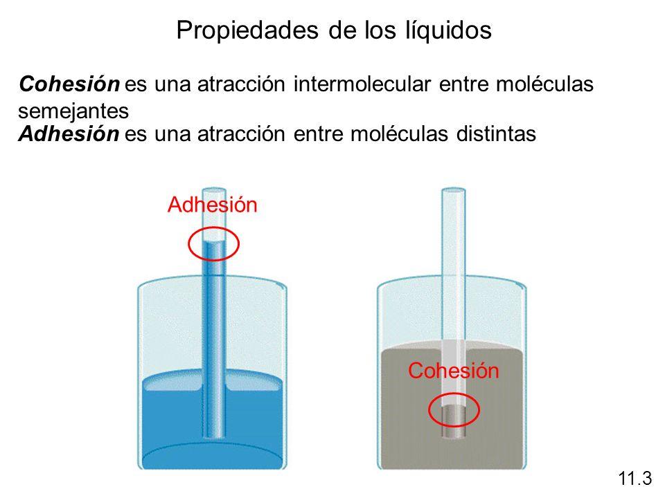Propiedades de los líquidos Cohesión es una atracción intermolecular entre moléculas semejantes 11.3 Adhesión es una atracción entre moléculas distint