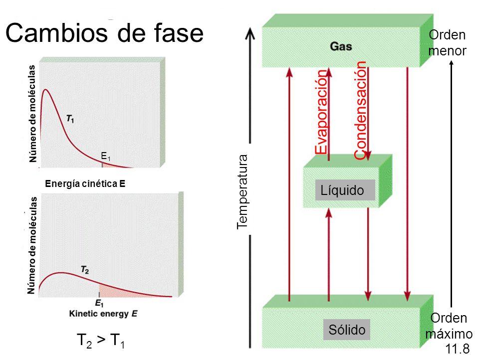 Evaporación Orden máximo Orden menor 11.8 Condensación T 2 > T 1 Cambios de fase Líquido Sólido Temperatura Número de moléculas Energía cinética E E1E