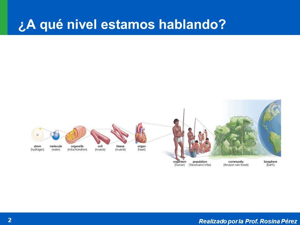 Realizado por la Prof. Rosina Pérez 2 ¿A qué nivel estamos hablando?