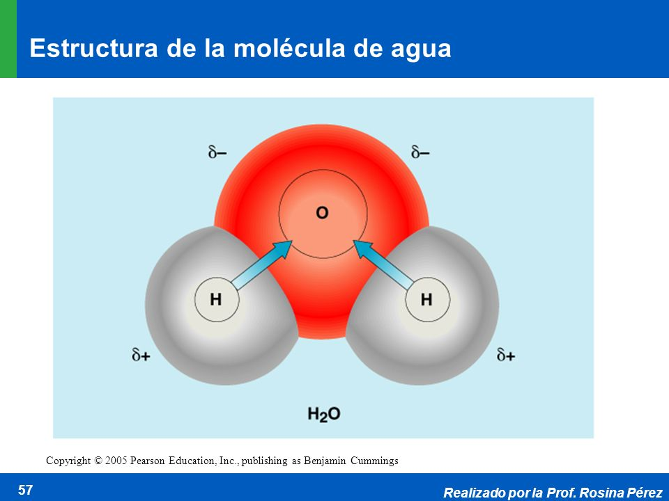 Realizado por la Prof. Rosina Pérez 57 Copyright © 2005 Pearson Education, Inc., publishing as Benjamin Cummings Estructura de la molécula de agua