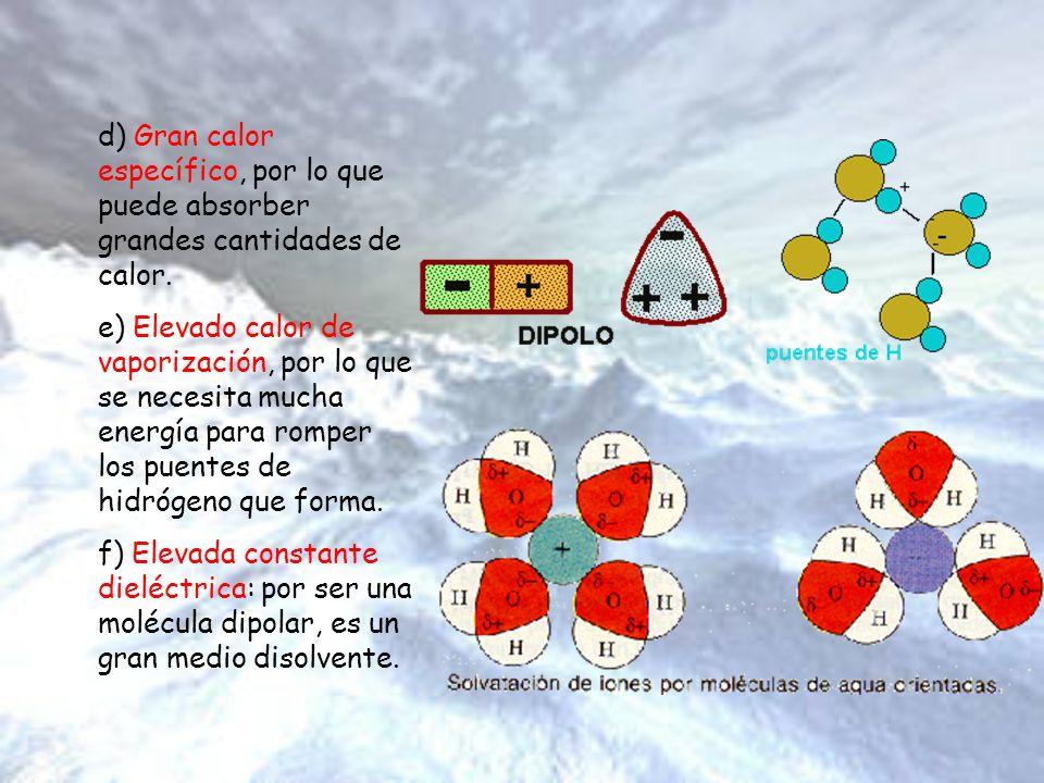 Funciones del Agua Las funciones del agua se relacionan íntimamente con las propiedades anteriormente descritas.