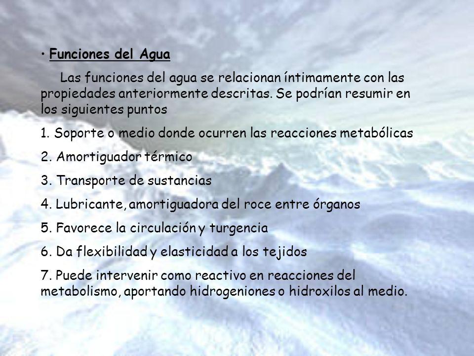 Funciones del Agua Las funciones del agua se relacionan íntimamente con las propiedades anteriormente descritas. Se podrían resumir en los siguientes