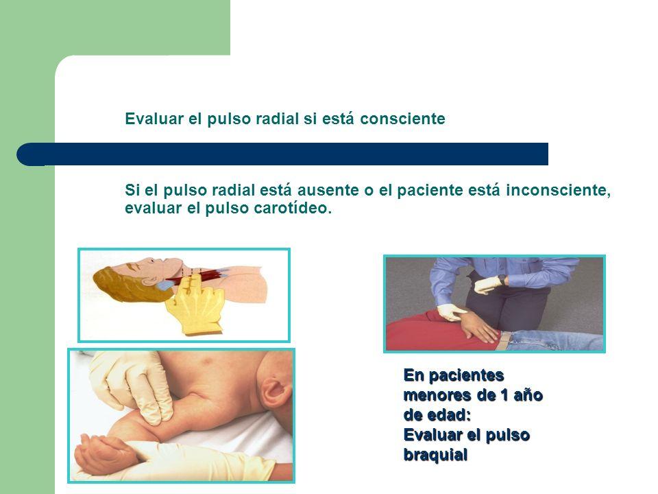 Evaluar el pulso radial si está consciente Si el pulso radial está ausente o el paciente está inconsciente, evaluar el pulso carotídeo. En pacientes m