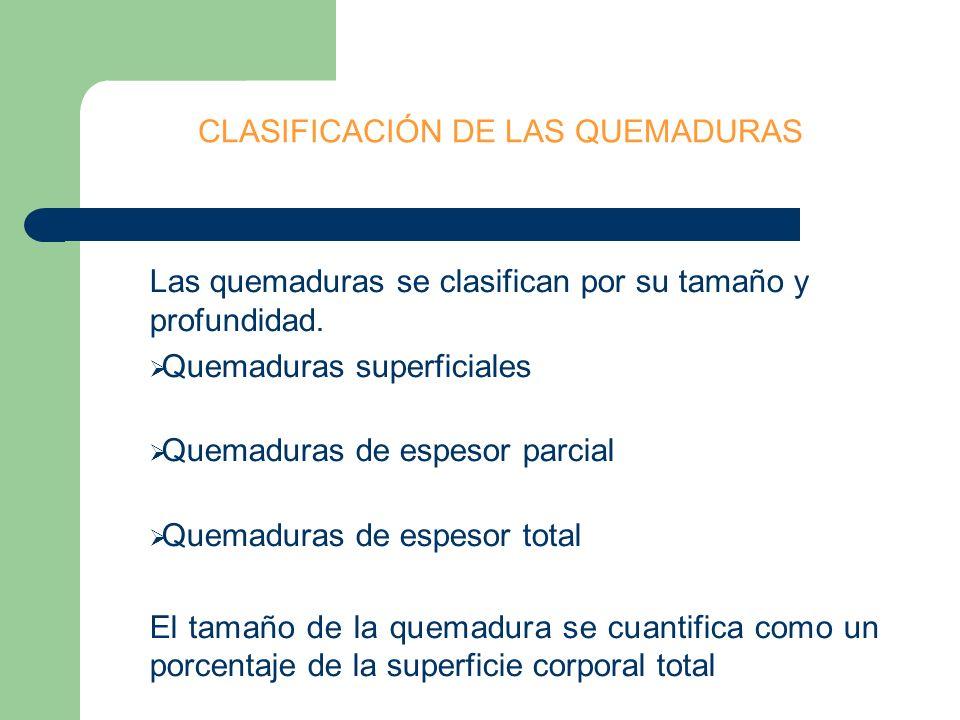 CLASIFICACION DE LAS QUEMADURAS Afecta solo la primera capa de la piel QUEMADURAS DE 1er GRADO