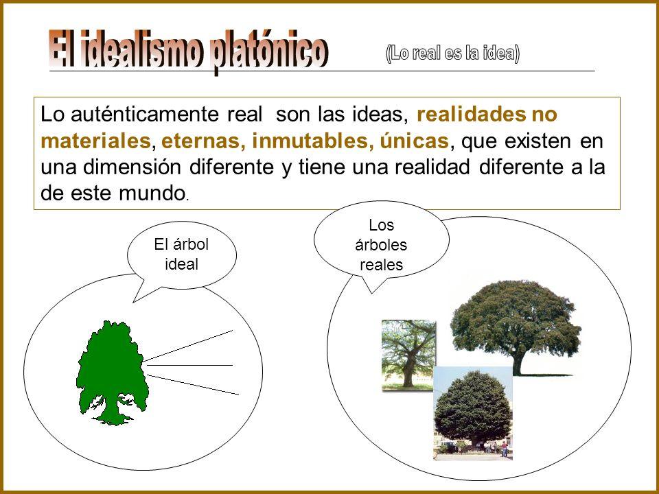 Lo auténticamente real son las ideas, realidades no materiales, eternas, inmutables, únicas, que existen en una dimensión diferente y tiene una realid