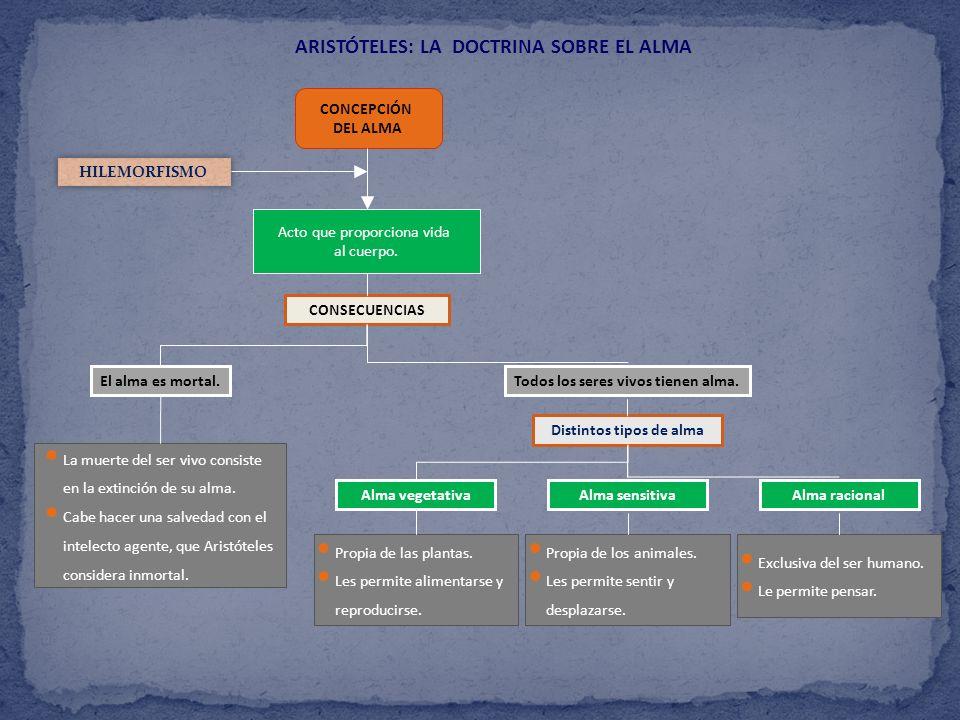ARISTÓTELES: LA DOCTRINA SOBRE EL ALMA CONCEPCIÓN DEL ALMA HILEMORFISMO Acto que proporciona vida al cuerpo. CONSECUENCIAS El alma es mortal. Todos lo