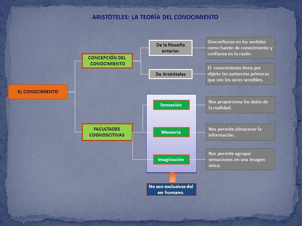 ARISTÓTELES: LA TEORÍA DEL CONOCIMIENTO EL CONOCIMIENTO CONCEPCIÓN DEL CONOCIMIENTO FACULTADES COGNOSCITIVAS De Aristóteles De la filosofía anterior I