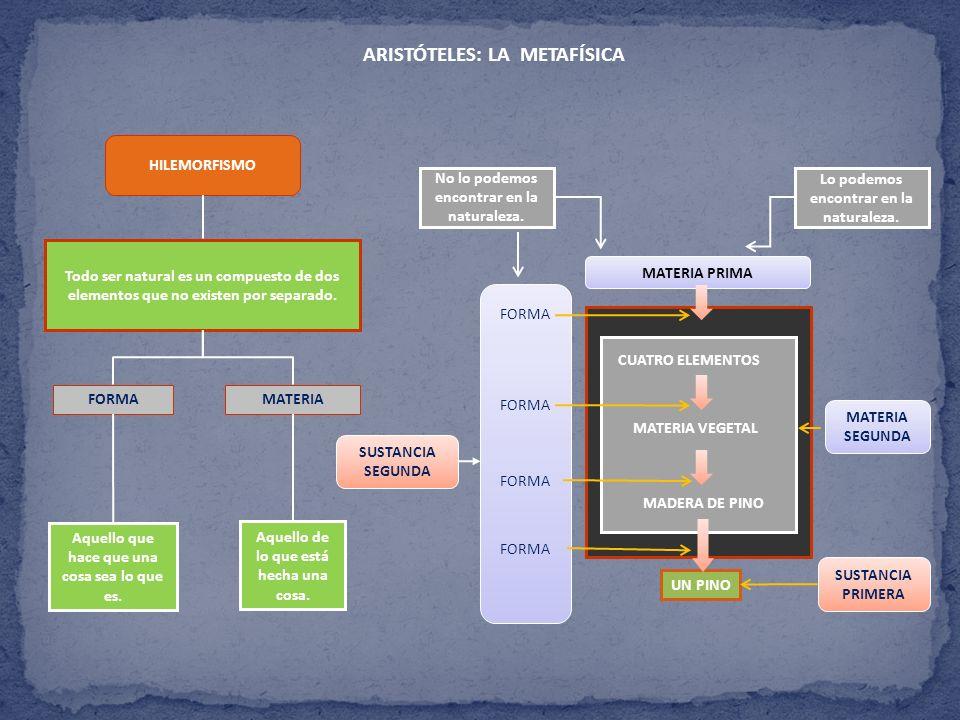 ARISTÓTELES: LA METAFÍSICA SER EN ACTO Y SER EN POTENCIA CONCEPTOS CARACTERÍSTICAS Potencia Acto El acto es anterior a la potencia.