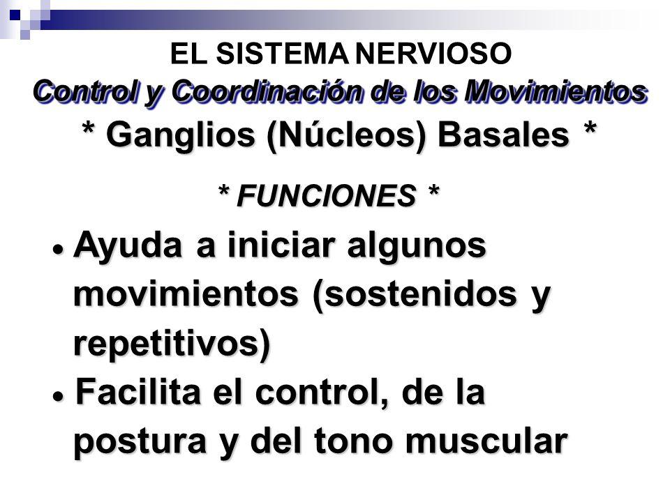 Ayuda a iniciar algunos Ayuda a iniciar algunos movimientos (sostenidos y movimientos (sostenidos y repetitivos) repetitivos) Facilita el control, de