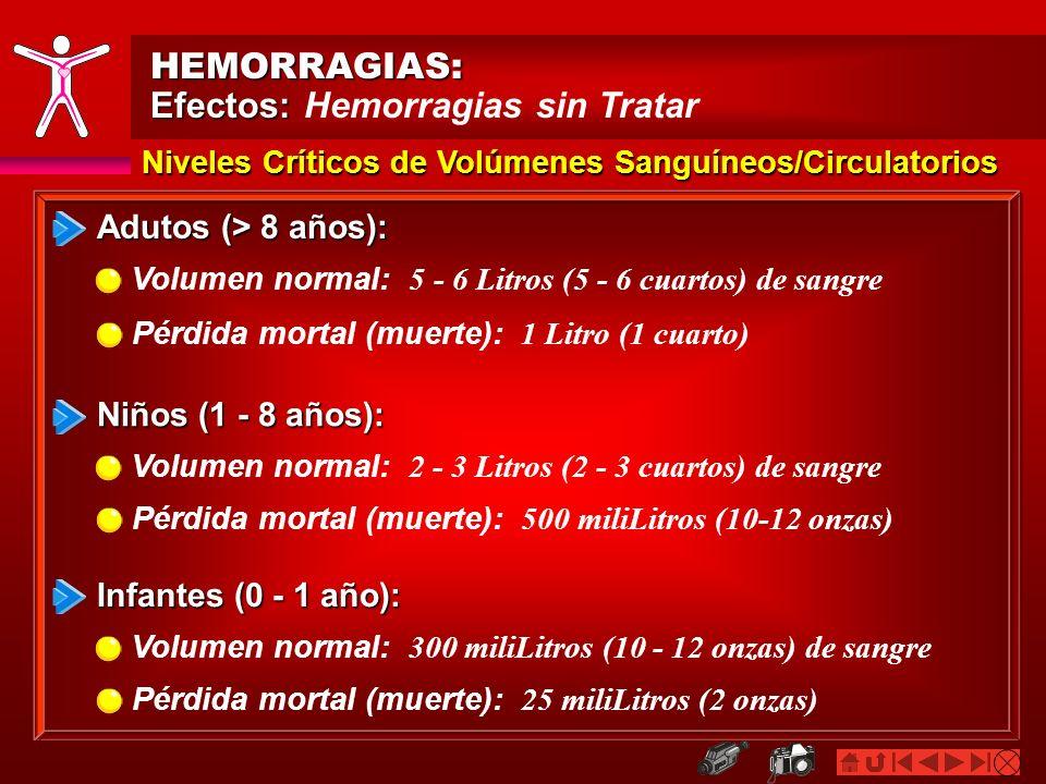 HEMORRAGIAS: Efectos: Efectos: Hemorragias sin Tratar Adutos (> 8 años): Volumen normal: 5 - 6 Litros (5 - 6 cuartos) de sangre Pérdida mortal (muerte