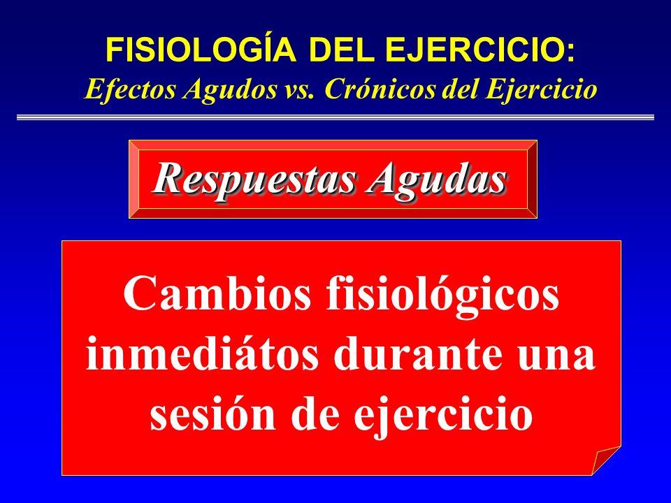 FISIOLOGÍA DEL EJERCICIO: Efectos Agudos vs. Crónicos del Ejercicio Respuestas Agudas Cambios fisiológicos inmediátos durante una sesión de ejercicio