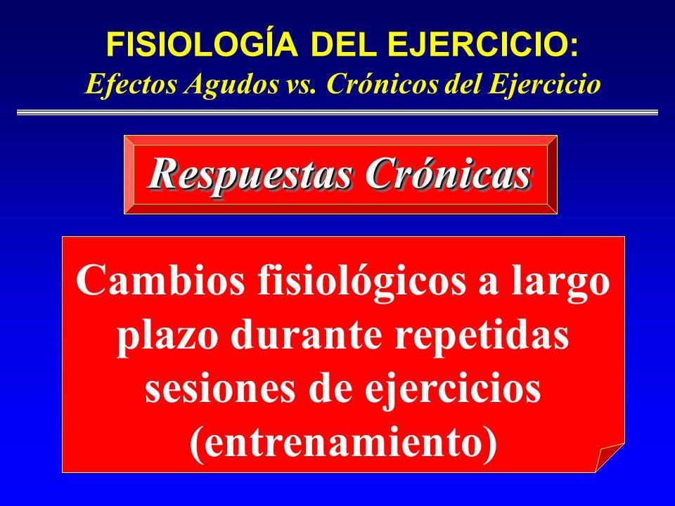 FISIOLOGÍA DEL EJERCICIO: Efectos Agudos vs. Crónicos del Ejercicio Respuestas Crónicas Cambios fisiológicos a largo plazo durante repetidas sesiones