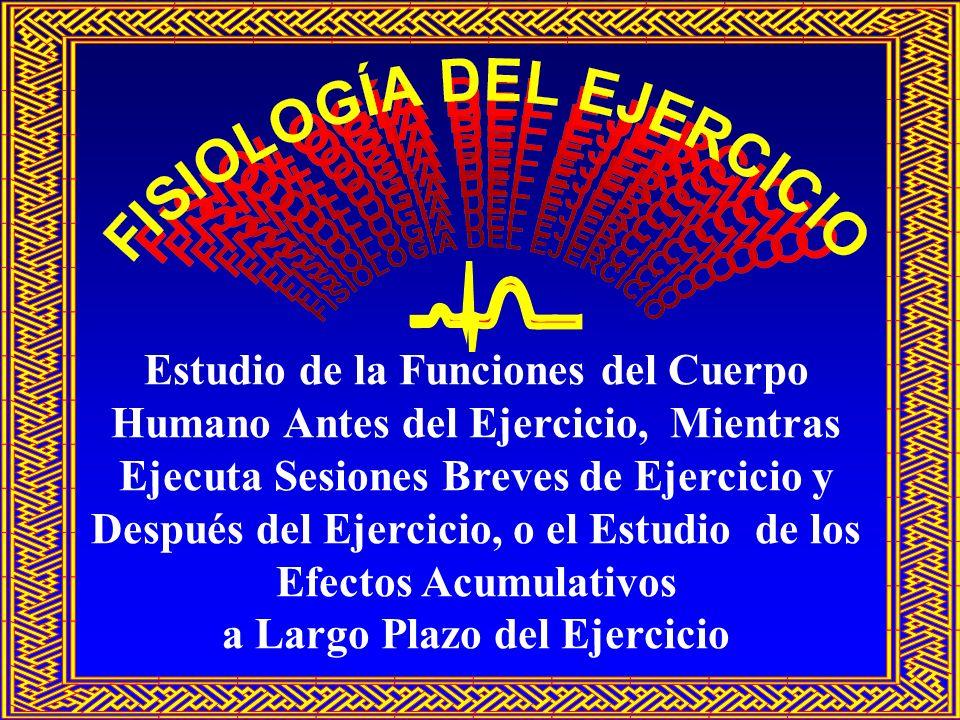 FISIOLOGÍA DEL EJERCICIO: CONCEPTOS BÁSICOS Fisiología del Esfuerzo: Estudio de los cambios morfológicos y funcionales de los órganos corporales durante ejercicios agudos (inmediatos) y crónicos (a largo plazo)