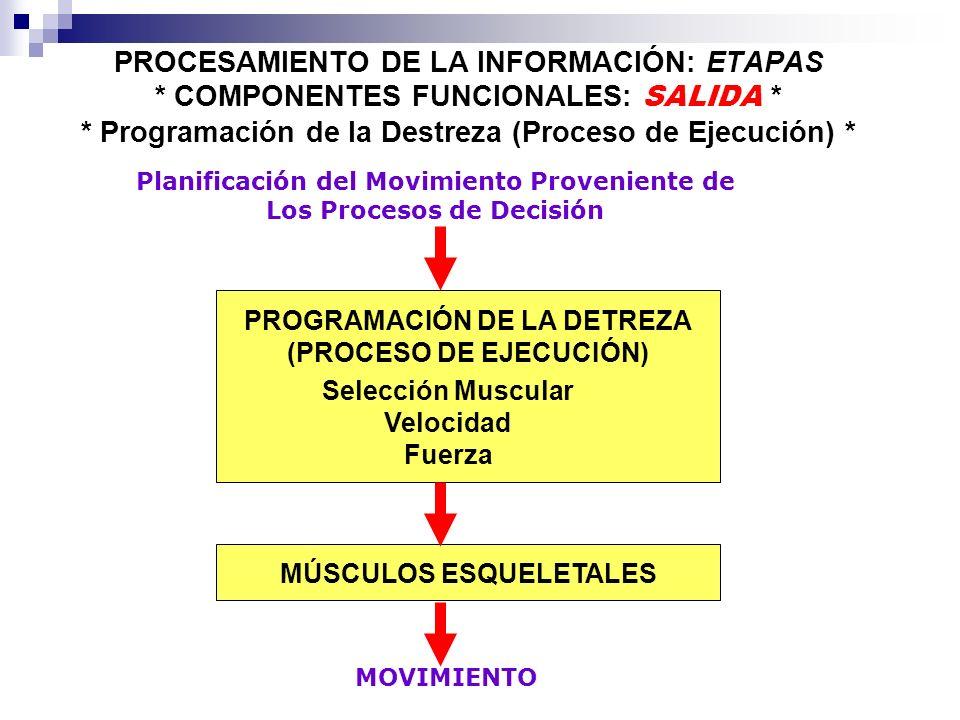 PROCESAMIENTO DE LA INFORMACIÓN: ETAPAS Despues que un ejecutante haya certeramente identificado el estímulo apropiado desde todas las entradas en el ambiente (procesos perceptuales) y haya seleccionado los patrones de movimiento que le permitirán alcanzar la meta deseada (proceso de decisión): Despues que un ejecutante haya certeramente identificado el estímulo apropiado desde todas las entradas en el ambiente (procesos perceptuales) y haya seleccionado los patrones de movimiento que le permitirán alcanzar la meta deseada (proceso de decisión): Un conjunto de comandos a nivel de sistema nervioso central deben de ser enviados a la musculatura correspondiente para poder generar un movimiento.