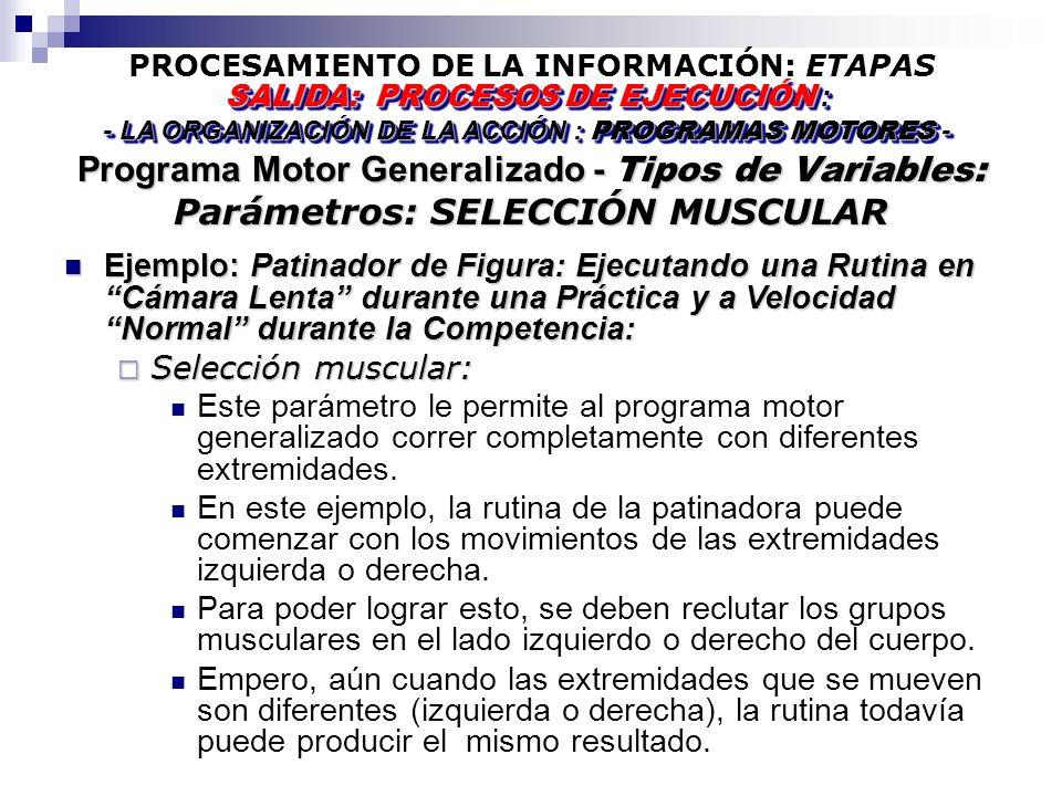 PROCESAMIENTO DE LA INFORMACIÓN: ETAPAS Programa Motor Generalizado - Tipos de Variables: Parámetros: SELECCIÓN MUSCULAR SALIDA: PROCESOS DE EJECUCIÓN : - LA ORGANIZACIÓN DE LA ACCIÓN : PROGRAMAS MOTORES - SALIDA: PROCESOS DE EJECUCIÓN : - LA ORGANIZACIÓN DE LA ACCIÓN : PROGRAMAS MOTORES - Ejemplo: Patinador de Figura: Ejecutando una Rutina en Cámara Lenta durante una Práctica y a Velocidad Normal durante la Competencia: Ejemplo: Patinador de Figura: Ejecutando una Rutina en Cámara Lenta durante una Práctica y a Velocidad Normal durante la Competencia: Selección muscular: Selección muscular: Este parámetro le permite al programa motor generalizado correr completamente con diferentes extremidades.