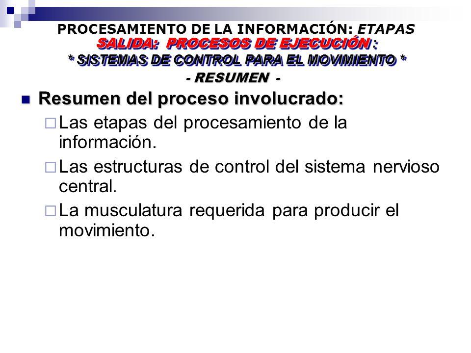 PROCESAMIENTO DE LA INFORMACIÓN: ETAPAS - RESUMEN - - RESUMEN - SALIDA: PROCESOS DE EJECUCIÓN : * SISTEMAS DE CONTROL PARA EL MOVIMIENTO * SALIDA: PROCESOS DE EJECUCIÓN : * SISTEMAS DE CONTROL PARA EL MOVIMIENTO * Resumen del proceso involucrado: Resumen del proceso involucrado: Las etapas del procesamiento de la información.