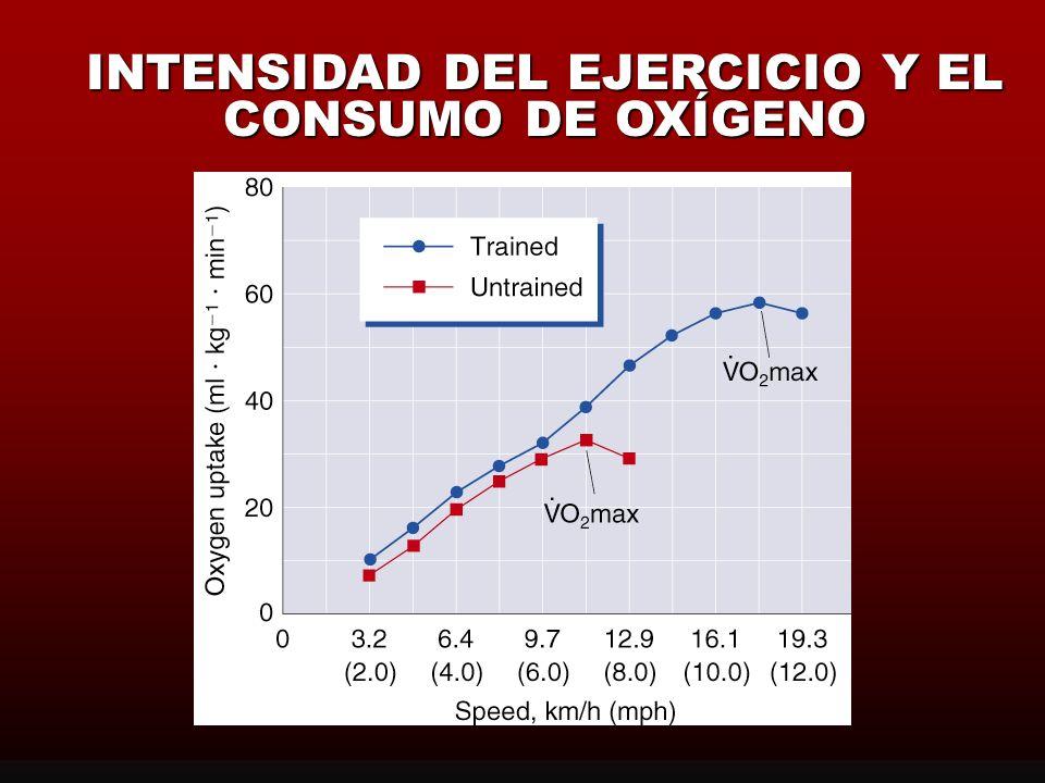 CONSUMO ENERGÉTICO (USO DE LA ENERGÍA) Prueba de Esfuerzo/Ergométrica Potencia Ergométrica (Intensidad) de forma Progresiva Potencia Ergométrica (Inte