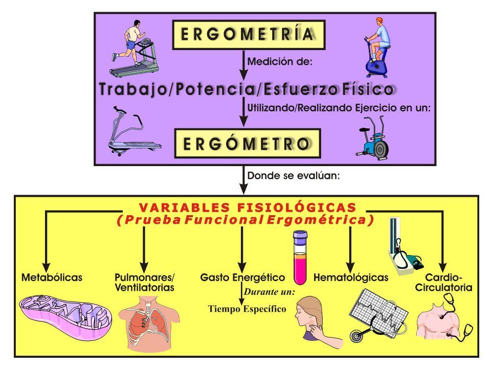 ERGOMETR Í A: Utilización de Ergómetros Ergómetro (Ergo = Trabajo; Metro = Medida) Ergómetro Instrumento de ejercicio que permite controlar (estandari